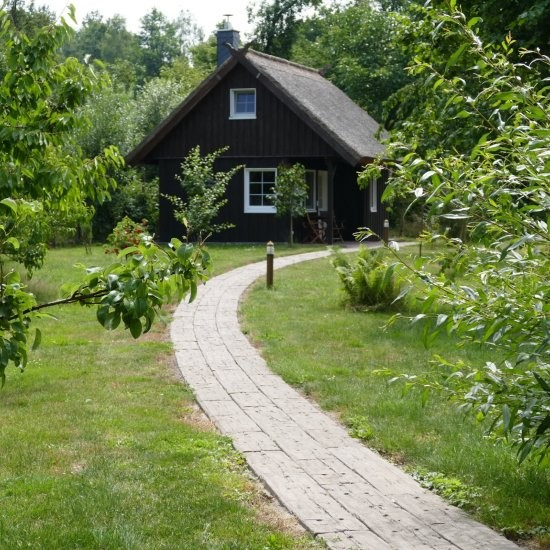 Ferienhaus »Bienenhaus« - Überall Grün im garten